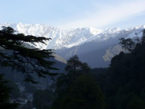 Holiday homes in Manali, Himachal Pradesh