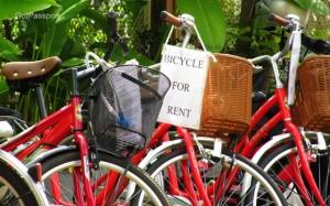 Bike on rent