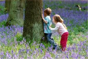 Children in Bluebell Wood