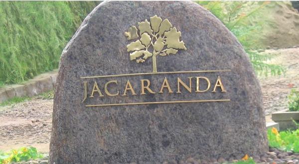 Jacaranda Kodaikanal