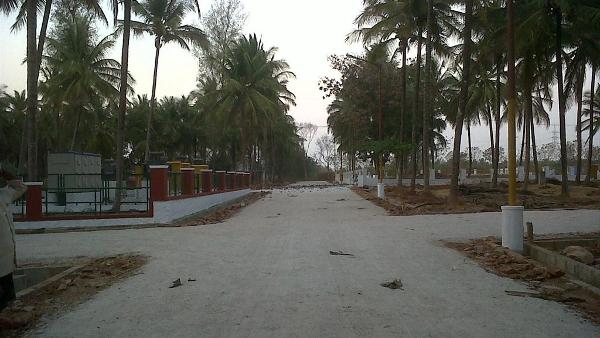 Samatha Woods Mysore 3