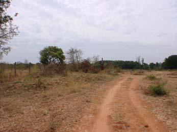 Midmac Brookefield Mysore 3